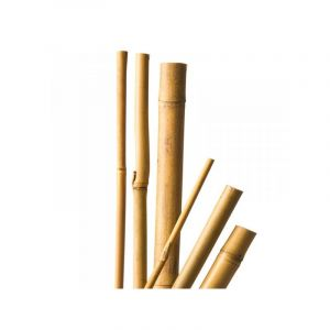 Tuteurs x 4 bambou naturel - 150 cm / Ø12-14 mm - CIS