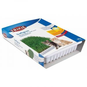 Bac d'herbe tendre - 100 g - Lot de 10 - TRIXIE