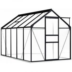 Serre avec cadre de base Anthracite Aluminium 5,89 m² - VIDAXL