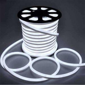 Néon LED Flexible lumineux   Blanc Froid 6000K - 10m - LECLUBLED