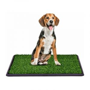 Pelouse de toilette chien Litière pour chien Tapis de toilettes pour chien 50 x 75cm - COSTWAY