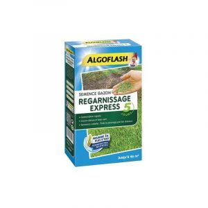 ALGOFLASH SEMENCES GAZON REGARNISSAGE EXPRESS - 1 KG SEMEX1