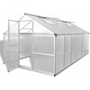 Youthup - Serre renforcée en aluminium avec cadre de base 9,025 m2