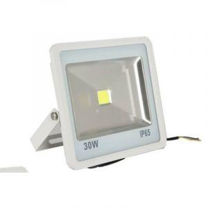 Projecteur LED blanc froid 30 Watts IP 65 - GÉNÉRIQUE SANS MARQUE