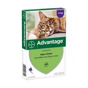 Advantage Nr. 80 pour chat ACTION TEMPORAIRE Par paquet