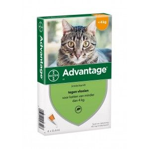 Advantage Nr. 40 pour chat ACTION TEMPORAIRE Par paquet