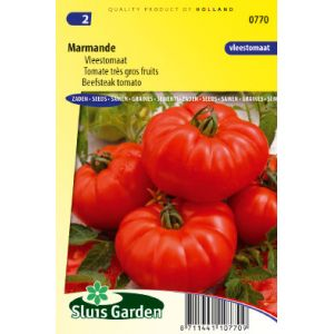 Tomate beefsteak Marmande