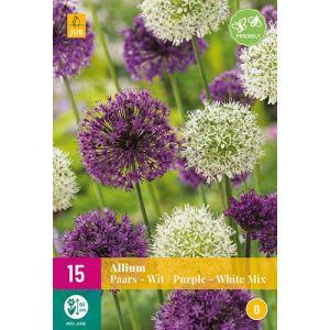 Allium Violet & Blanc Mélange