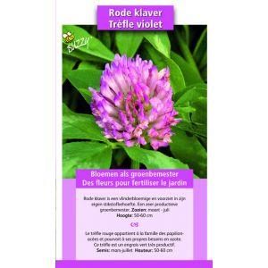 Fumage ou d'engrais vert Trèfle violet / 150 gr - 60 m2