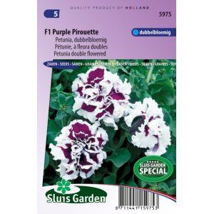 Petunia à fleurs doubles F1 Purple Pirouette
