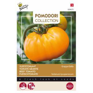 Thème - Tomate Brandywine Jaune - Grappa gialla