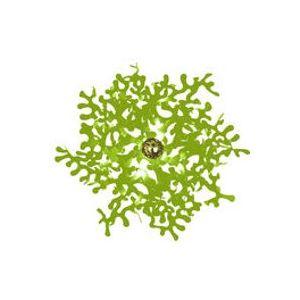 Applique Leaves / Plafonnier - Lumen Center Italia vert en métal