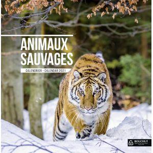 Calendrier annuel 2019 couleurs sauvages 30 x 30 cm