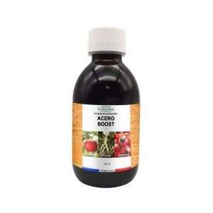 Acéro boost 250ml (acérola, ginseng et guarana) vitamine C