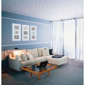 Dalles de plafond polystyrène Vienne