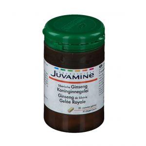JUVAMINE Ginseng de Sibérie Gelée Royale pc(s) capsule(s)