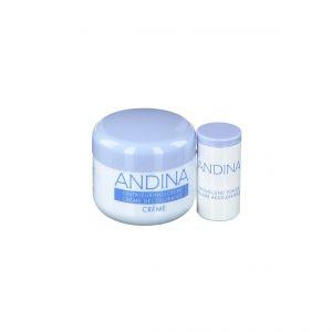 Andina Crème décolorante + Poudre