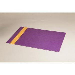 318900C - Sous main Rhodiarama, finition simili cuir, coloris violet