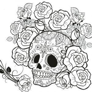 Châssis pré-dessiné pour Tangle, Tête de mort, Tête de mort