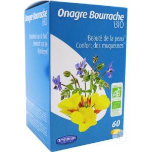 Orthonat Onagre Bourrache 60 Capsules