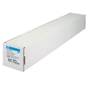 Rouleau Papier HP Q1398A 80G A1