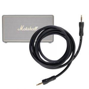 Câble audio 2x prises mâles pour Marshall Stockwell Enceinte Portable - DURAGADGET