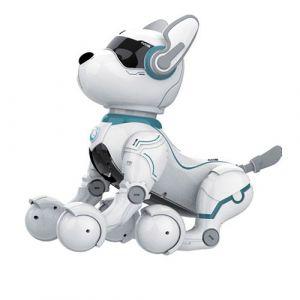 Discours Contrôle Vocal Leidy Chien Robot Animaux Jouets Robotiques Pour Chiens Puggy Jouets BT076