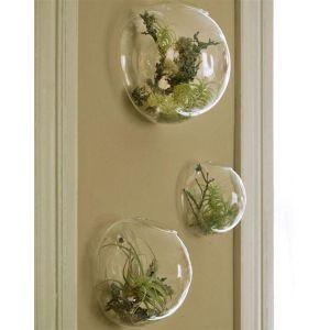 Murale Planteur et Fleurs Bubble Pot, Contenants et accessoires pour plantes(3 pièces)