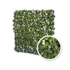Treillis Extensible Feuilles de Jasmin fleuries 1m x 2m