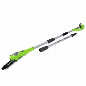 Greenworks Tools 2000107 Élagueuse Sur Perche Sans Fil Lithium-Ion 24 V
