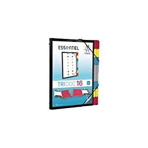 Viquel - Trieur 16 positions en plastique - Porte document personnalisable - Pochette pour classer et transporter des documents - Fermeture par élastique - Format A4