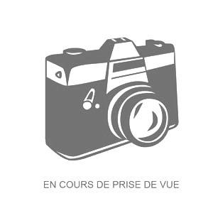 GODIN TRESSE VERRE DIM 10.5 MM pour cuisinière Bois Charbon rustique 6755