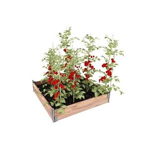 Kit Carré potager bois 100x100cm - Pin, made in France