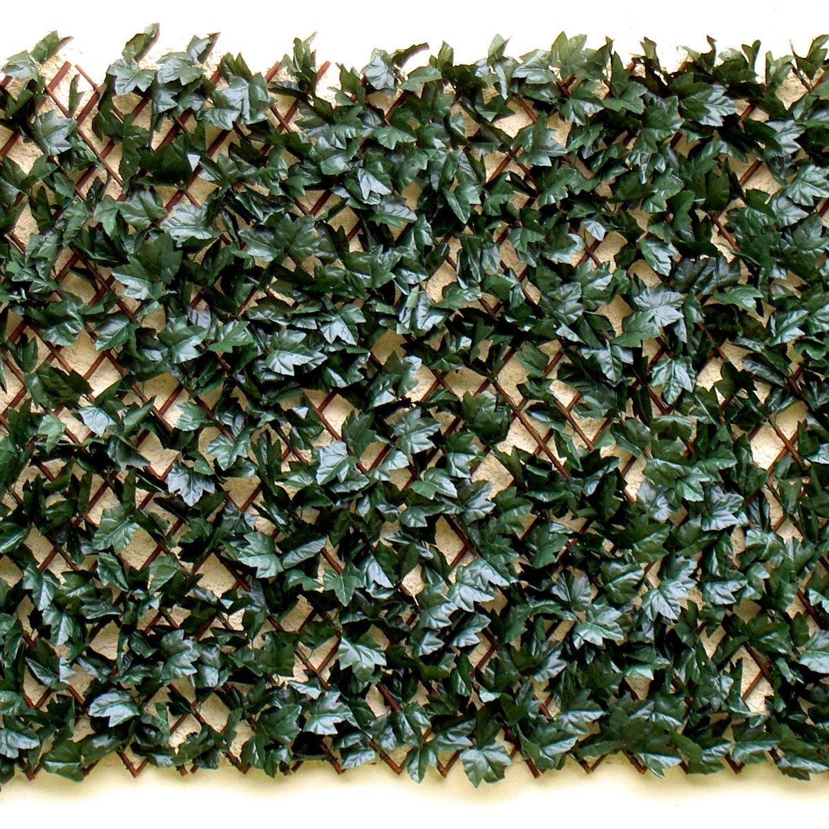 euro castor green treillis fleuri extensible 1 x 2 m comparer avec. Black Bedroom Furniture Sets. Home Design Ideas
